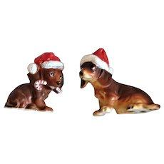 Christmas Beagle Puppies Wearing Christmas Hats