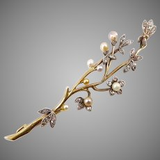 Antique Edelweiss Flower Spray Brooch of Gold, Diamonds, and Pearls