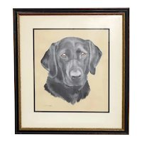 Vintage Black Lab Labrador Watercolor Painting Framed and Matted JC King