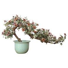 "14 lb. SHOW STOPPER Chinese Jade Tree Oriental Bonsai Gemstones  Jade Plant 28""x  17"" c.1900's"