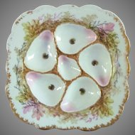 Rare Fischer and Mieg  Oyster Plate 1853-73  Bohemian Porcelain