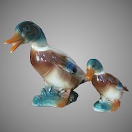 PAIR 1950's Royal Copley Mallard Duck Ceramic