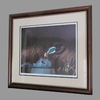 "D. Nicholson Miller Lithograph Signed Numbered Framed Waterfowl  27"" x 30""  --- SPLASH 1"