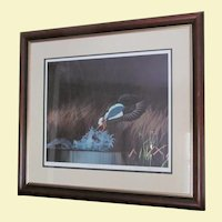 "D. Nicholson Miller Lithograph Signed Numbered Framed Waterfowl  Duck 27"" x 30""  --- SPLASH 1"