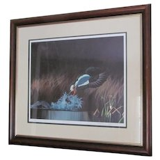 """D. Nicholson Miller Lithograph Signed Numbered Framed Waterfowl  Duck 27"""" x 30""""  --- SPLASH 1"""