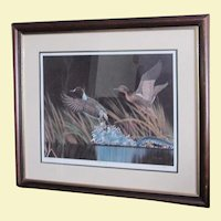 "D. Nicholson Miller Lithograph Signed Numbered Framed Waterfowl  Duck 27"" x 30"" ---SPLASH II"