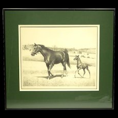 Original Lithograph of Horses by C W Anderson Ltd/Ed Pencil Signed