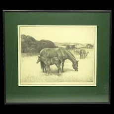 """Original Lithograph of Horses by C W Anderson Ltd/Ed Pencil Signed """"Mother's Boy"""""""