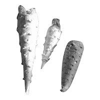3 Old Spun Cotton Icicles - TLC - Free US Ship