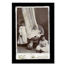 c. 1890s Children & CAT Doll Cabinet Photo, Emmetsburg, Iowa