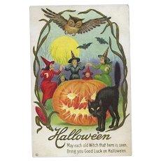H-126 PM'd Oct. 31, 1914 Witches Dance Around JOL, Black Cat, Owl, Bats Halloween Postcard
