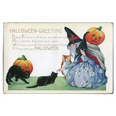 H-16 Witch, Black Cats, Jack-o-Lanterns, Owl, Whitney Halloween Postcard
