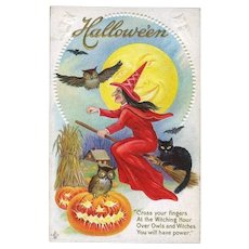 H-29 Antique Halloween Postcard, Witch in Red, Cat, Owls, Stecher Litho Series 216C