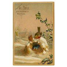 Winter Birds on Snowy Nest & Holly, Chromolitho Card, M.L. Doyle, NY (#17)