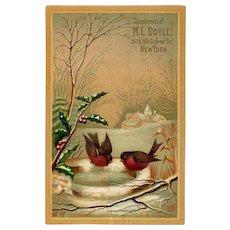 Winter Robins on Icy Birdbath & Holly, M.L. Doyle Victorian Trade Card #18