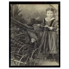 Victorian Girl, China Doll in Carriage Studio Photo #40