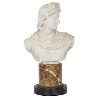 19th Century Antique Italian Marble Bust of Apollo Belvedere