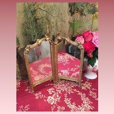 Amazing Mirror Paravant