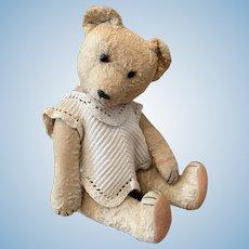 Unknown Germany Teddy Bear