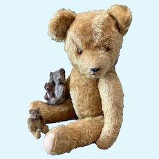 Lot of 4 Sweet Old Teddy Bears