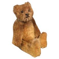 Little Original Steiff Teddy