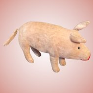 Lovely Early Small Velvet Pig by Steiff