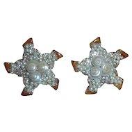 Bakelite Starfish Earrings with Real Shells