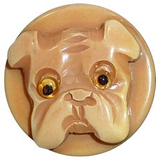 RARE! Bakelite Button Bull Dog Thick Carved Raised 2 Piece Layered Glass Eyes