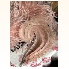 Original 1920's Pink Feather Boa and Feather Plume