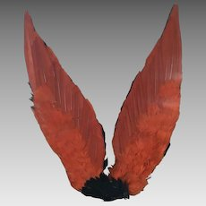 Original Vintage Unused Millinery Wings circa 1930's