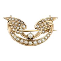 Art Nouveau Winged Crescent Moon Pin
