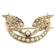 Art Nouveau Winged Crescent Moon Pin
