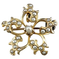 Victorian Cultured Seed Pearl Star Brooch or Pendant