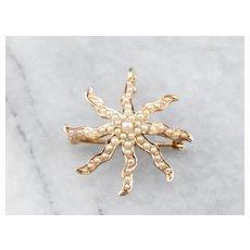 Art Nouveau Star Brooch Pendant