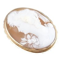 Stunning Vintage Cameo Pin or Pendant