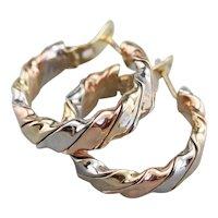 Tricolor Twist Hoop Earrings