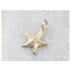 14K Starfish Charm