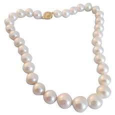South Sea Pearl Necklace with Fourteen Karat Yellow Gold Clasp