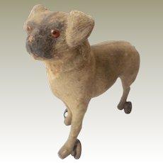 Tiny Pug Dog On Wheels c1890