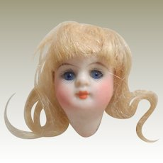 Kestner 208 Bisque Doll Head Only