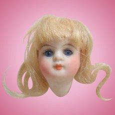Kestner 208 Bisque Doll Head Only