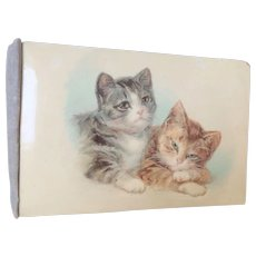 Lovely Old Cat Postcard Album c1915