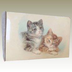 Lovely Old Cat Postcard Album c1915