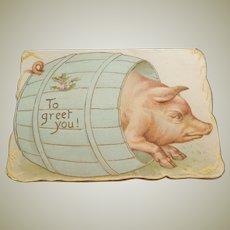 Edwardian Pig Christmas Card c1910