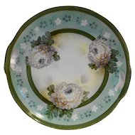 Erdmann Schlegelmilch ES Prov Saxe Germany Porcelain Handled Cake Plate Peonies Green 10 IN