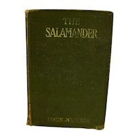 The Salamander by Owen Johnson Green Hardcover 1914