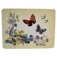 Butterfly Butterflies Tin Made in England Case Manufacturing