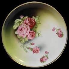 Roses Green Wash Porcelain Charger Cabinet Plate 12 IN Antique Weimar Germany