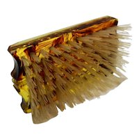 Lucite Tortoiseshell Look Hand Held Hair Clothes Brush WIth Case