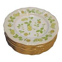 Petite Flora Ironstone Sears Japan Salad Plates Set of 8